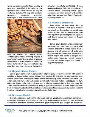 0000090049 Word Template - Page 4