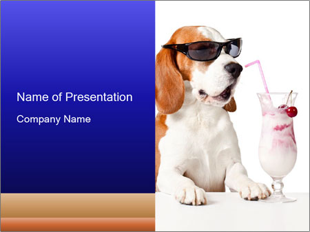 Dog Drinking Cocktail PowerPoint Template