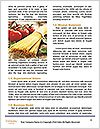 0000090058 Word Template - Page 4