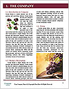 0000090060 Word Template - Page 3