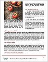0000090060 Word Template - Page 4