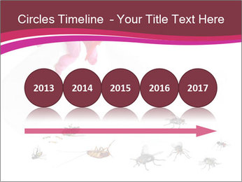 Pest control concept PowerPoint Template - Slide 29