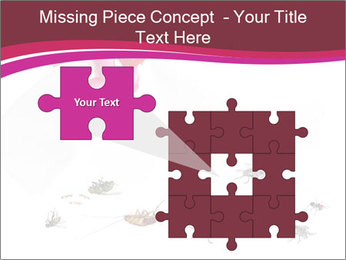 Pest control concept PowerPoint Template - Slide 45