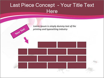 Pest control concept PowerPoint Template - Slide 46