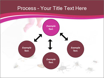 Pest control concept PowerPoint Template - Slide 91