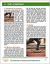0000090066 Word Template - Page 3