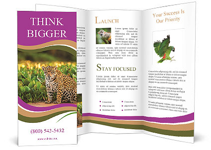 0000090079 Brochure Template