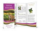 0000090079 Brochure Templates
