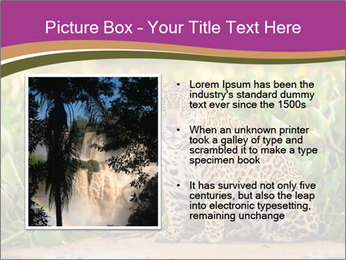 Wild Cat PowerPoint Template - Slide 13