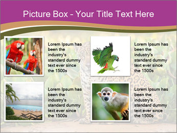 Wild Cat PowerPoint Template - Slide 14