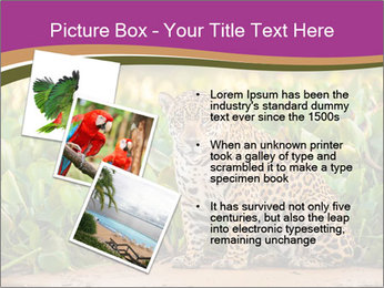 Wild Cat PowerPoint Template - Slide 17