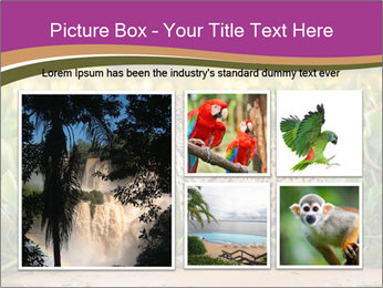 Wild Cat PowerPoint Template - Slide 19