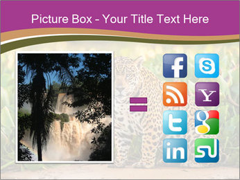 Wild Cat PowerPoint Template - Slide 21