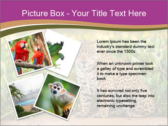 Wild Cat PowerPoint Template - Slide 23