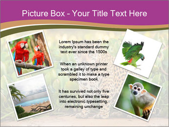 Wild Cat PowerPoint Template - Slide 24