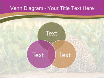 Wild Cat PowerPoint Template - Slide 33
