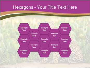 Wild Cat PowerPoint Template - Slide 44
