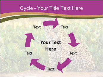 Wild Cat PowerPoint Template - Slide 62