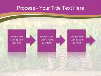 Wild Cat PowerPoint Template - Slide 88