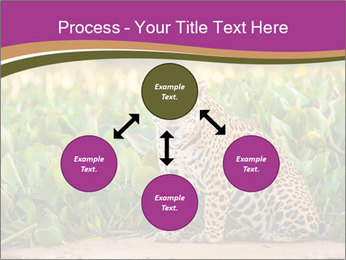 Wild Cat PowerPoint Template - Slide 91