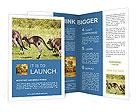 0000090084 Brochure Templates