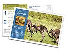 0000090084 Postcard Templates