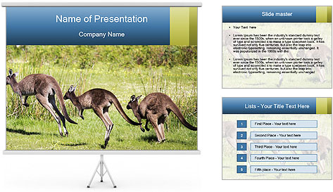 Three Kangaroos PowerPoint Template