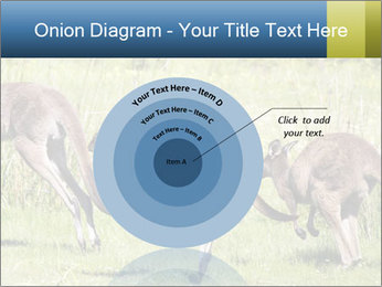 Three Kangaroos PowerPoint Template - Slide 61