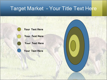 Three Kangaroos PowerPoint Template - Slide 84