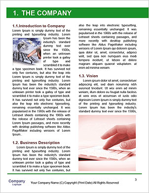 0000090085 Word Template - Page 3