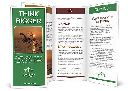 0000090091 Brochure Template