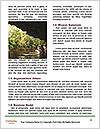 0000090091 Word Templates - Page 4