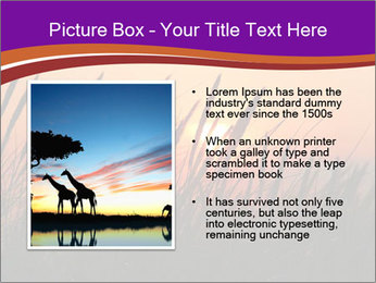 Sunset In Wheat Field PowerPoint Template - Slide 13