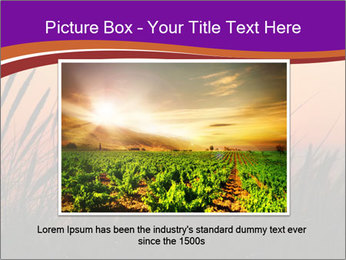 Sunset In Wheat Field PowerPoint Template - Slide 15