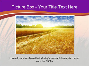 Sunset In Wheat Field PowerPoint Template - Slide 16