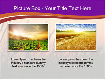 Sunset In Wheat Field PowerPoint Template - Slide 18