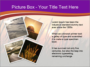 Sunset In Wheat Field PowerPoint Template - Slide 23