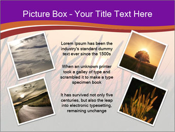 Sunset In Wheat Field PowerPoint Template - Slide 24