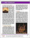 0000090100 Word Template - Page 3