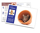 0000090102 Postcard Template