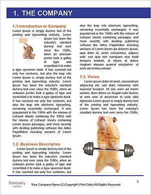 0000090102 Word Template - Page 3
