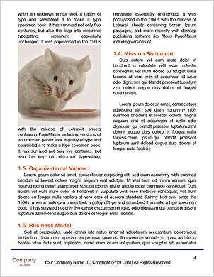 0000090102 Word Template - Page 4