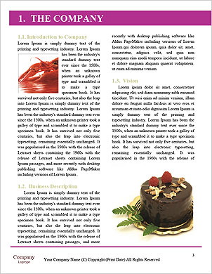0000090111 Word Template - Page 3