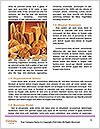 0000090112 Word Template - Page 4