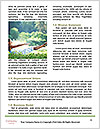 0000090114 Word Templates - Page 4