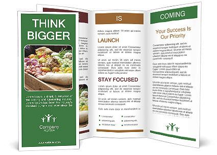 0000090116 Brochure Template