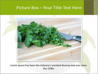 Mortar with mint isolated PowerPoint Template - Slide 15