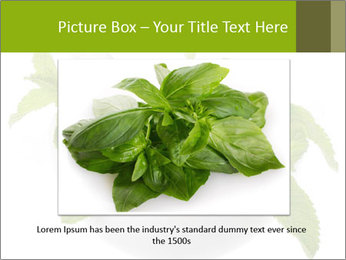 Mortar with mint isolated PowerPoint Template - Slide 16