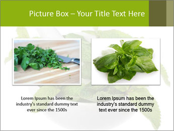 Mortar with mint isolated PowerPoint Template - Slide 18