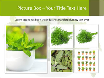 Mortar with mint isolated PowerPoint Template - Slide 19